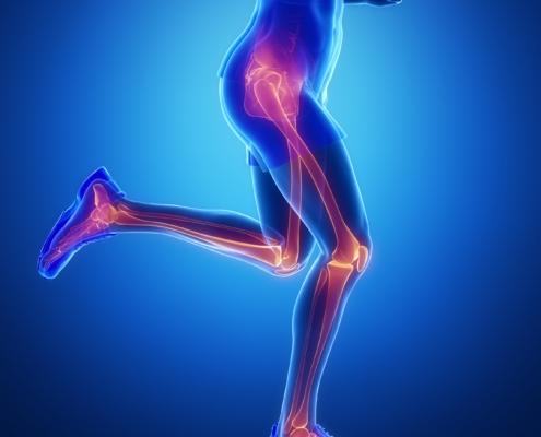 Hanche genou et cheville chiropraxie